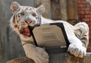 Illustration for article titled Panasonic Toughbook Survives Tiger Attacks, Elephant Stomps, and Gunshots