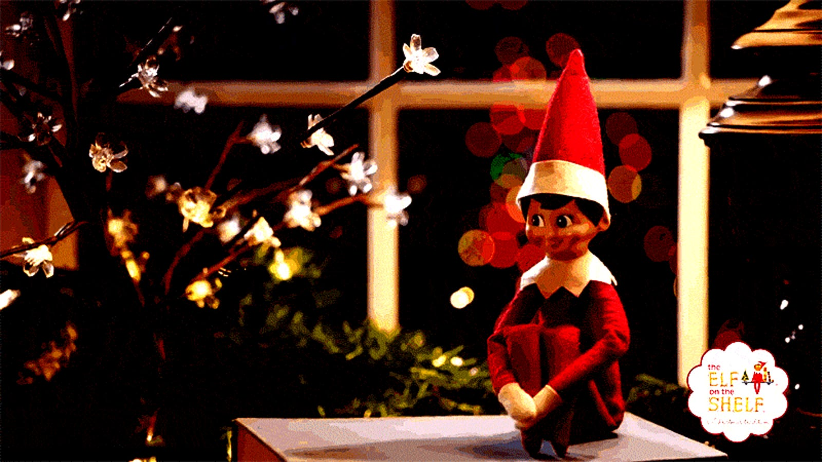 The best time i got that goddamn elf off my goddamn shelf - Christmas elf on the shelf wallpaper ...