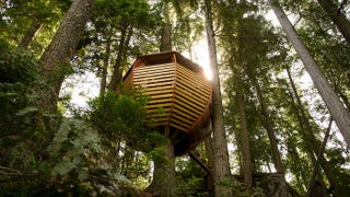 Illustration for article titled These Are The Most Amazing Tree Houses Ever