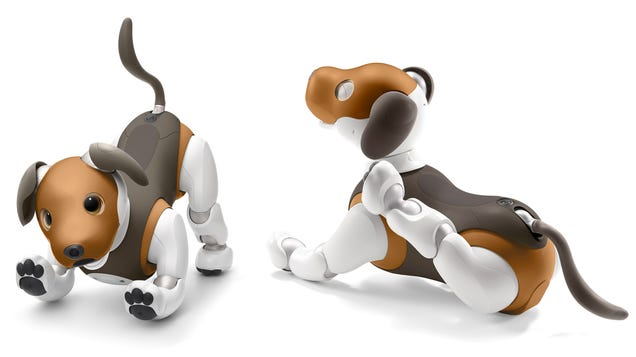 Sony Gives Aibo a New Paint Job and Plans to Teach It Some Home Security Tricks