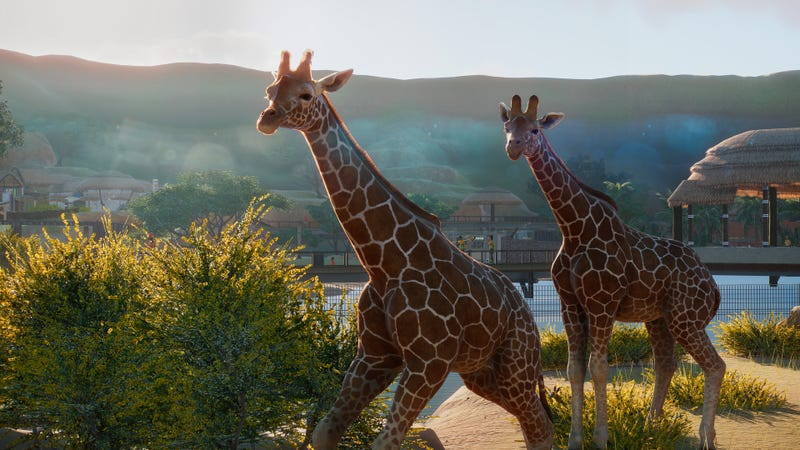 In Planet Zoo, You Can Only Get Good By Learning Facts About Animals