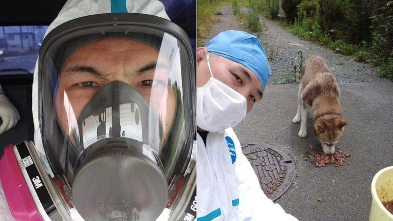 Illustration for article titled This MMA Badass Braved the Fukushima Evacuation Zone Just to Feed Stray Dogs
