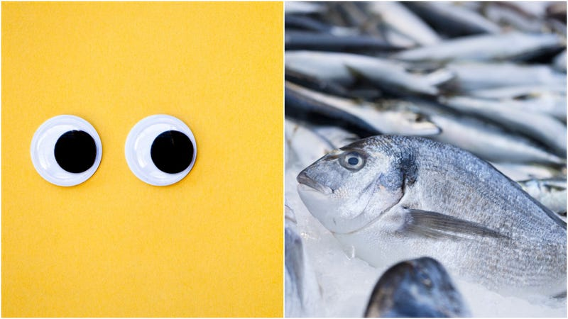 Illustration for article titled Fishmonger shut down for sticking googly eyes on fish