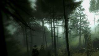 Illustration for article titled Masters of Slenderman Terror Join Slender Sequel
