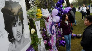 Prince fans beside a sea of purple balloons and flowers at a memorial wall outside the Paisley Park compound of the music legend, who died suddenly at the age of 57, just outside Minneapolis on April 24, 2016.MARK RALSTON/AFP/Getty Images