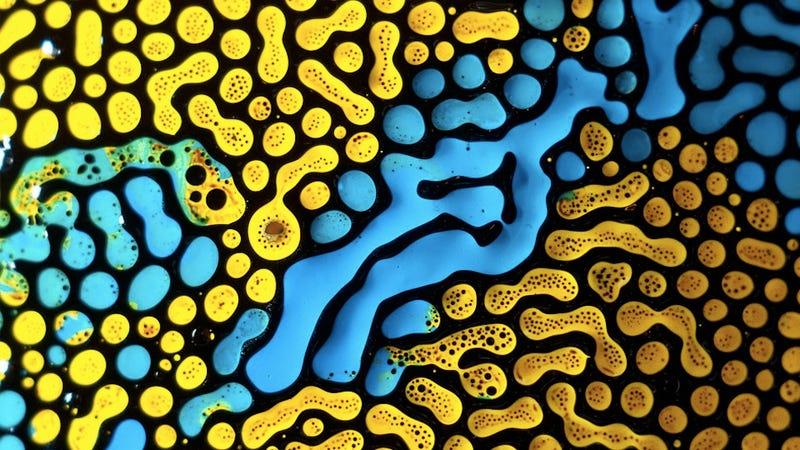 Illustration for article titled Technicolor ferrofluids are a magnetic acid trip