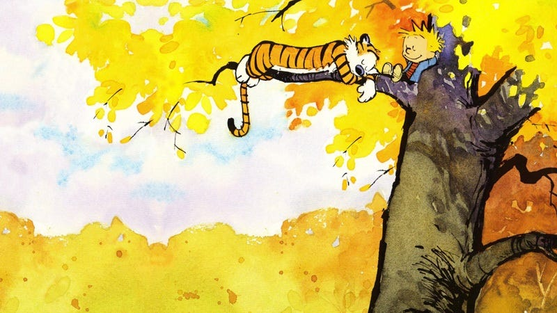 Illustration for article titled Dear Mr Watterson is a love letter to Calvin & Hobbes