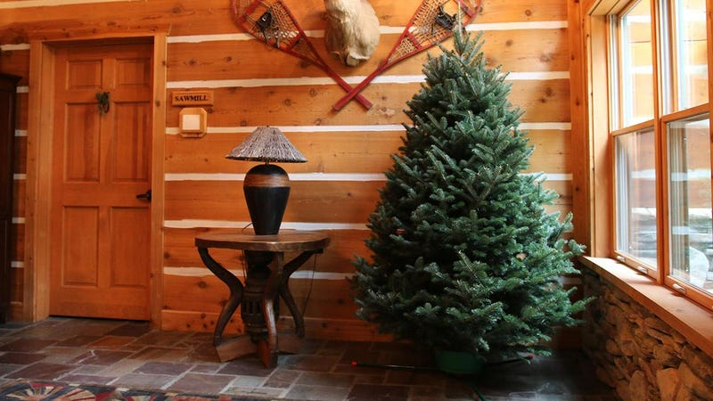 Fresh Cut Christmas Tree and Wreath | Groupon