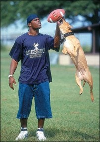 Illustration for article titled A Michael Vick Defender Anonymously Steps Forward To Offer Perspective