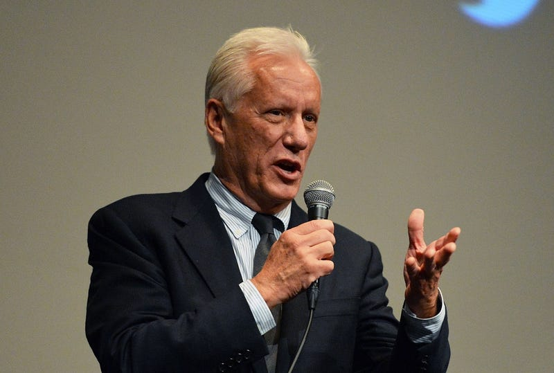 "James Woods in 2014, a year when he tweeted that Al Sharpton was a ""disgusting pig"" (Photo by Slaven Vlasic/Getty Images)"
