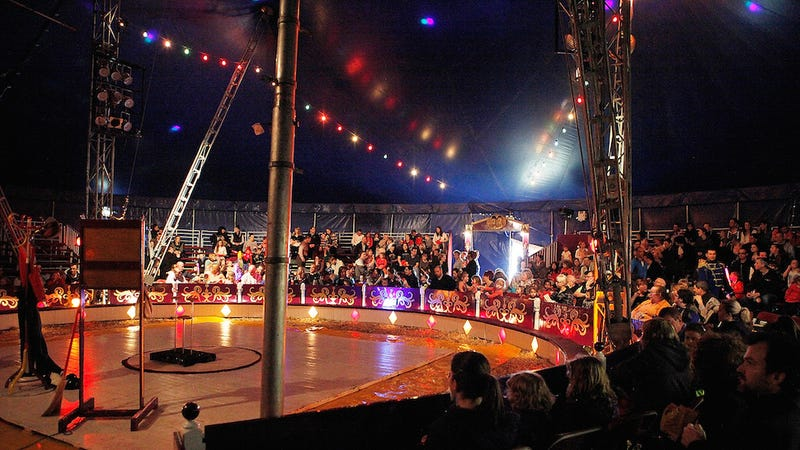 Illustration for article titled 9 Acrobats Injured After Circus Platform Collapses