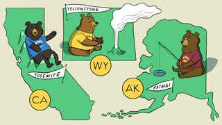 Three National Parks to Visit This Summer Because, Bears