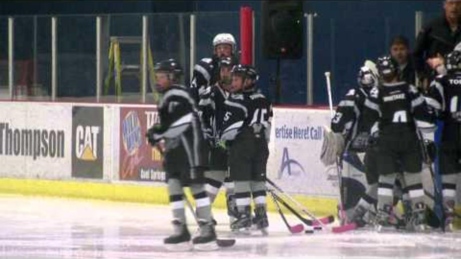 Desperate For Hockey Nashville Predators Fans Announcers