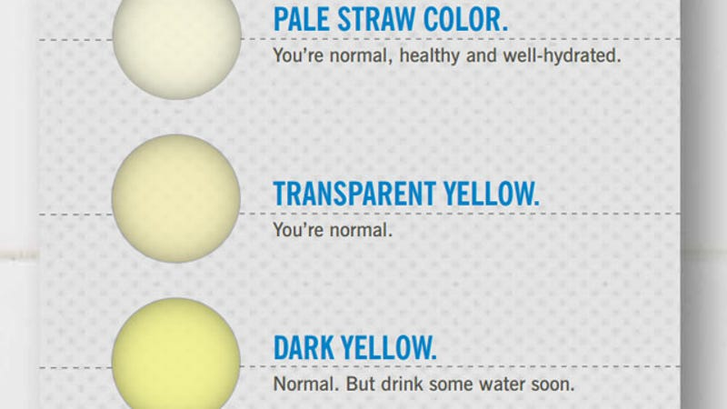 Dark Pee But Drinking Lots Water