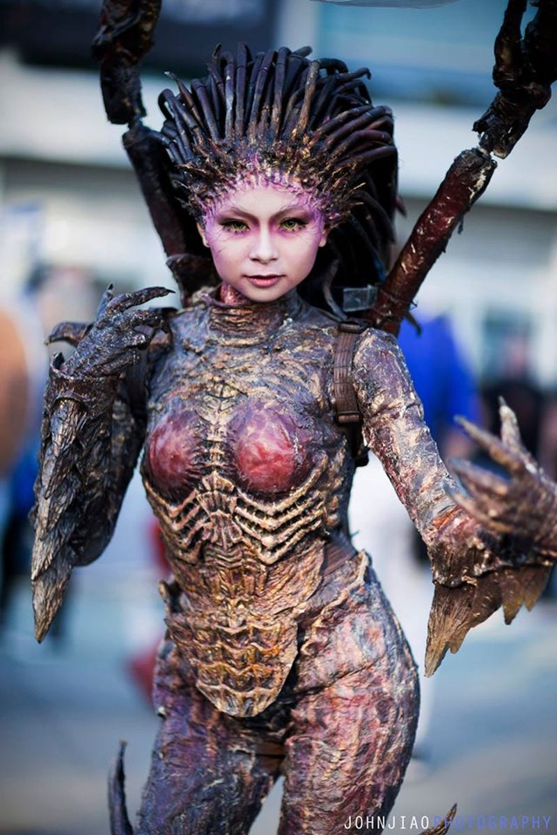 BlizzCon Had Some Truly Excellent Cosplay