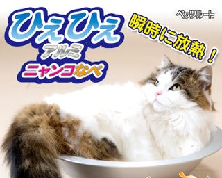 Illustration for article titled Japan Copes with Heat Wave by Inventing the Cooling Aluminum Kitty Pot