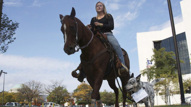 Illustration for article titled Woman Rides Horse To DMV To Get Driver's License Back