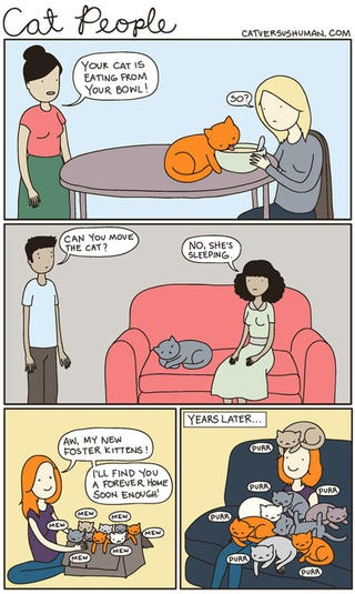 Illustration for article titled Awesome cat comics
