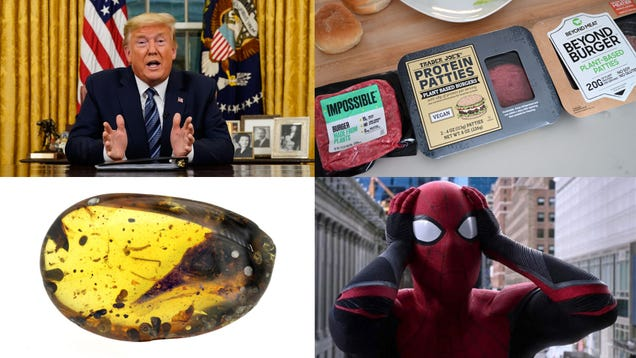 Trump's Coronavirus Lies, a Fake Meat Taste Test and a Really Weird Fossil: Best Gizmodo Stories of the Week