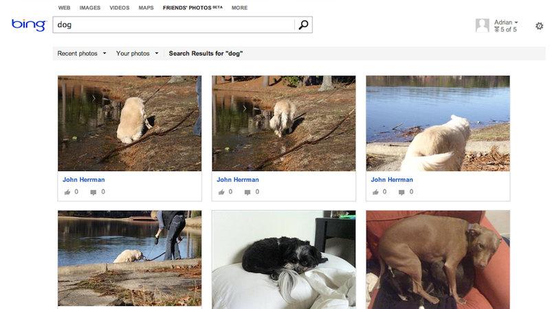 Illustration for article titled You Can Now Search Through Facebook Photos on Bing