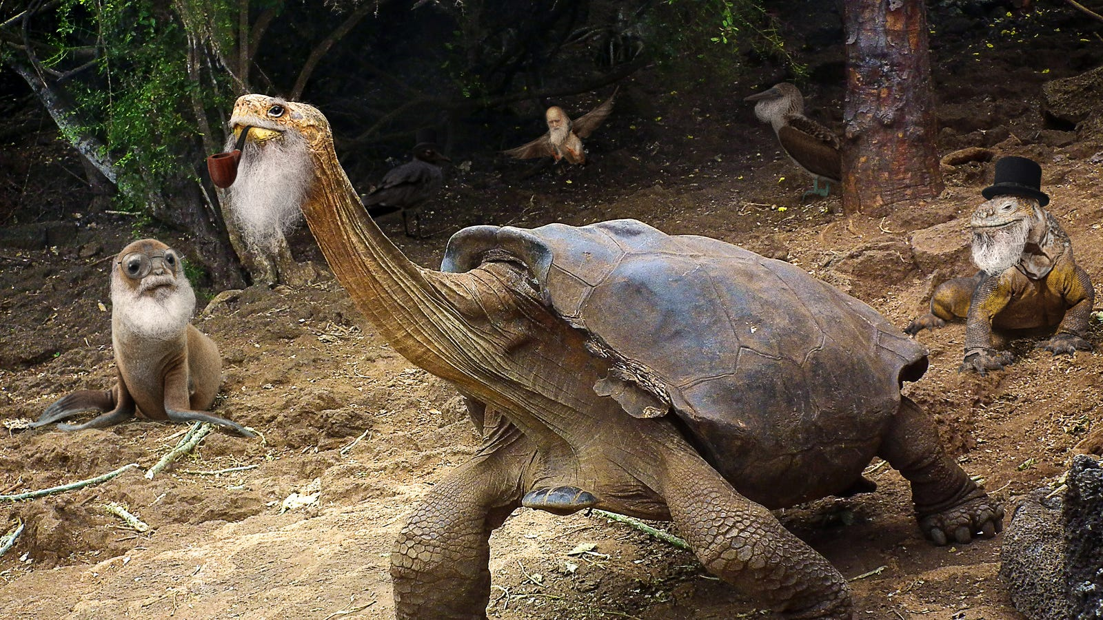Ecologists Discover 400 Species Of Charles Darwin Living In Galápagos Islands