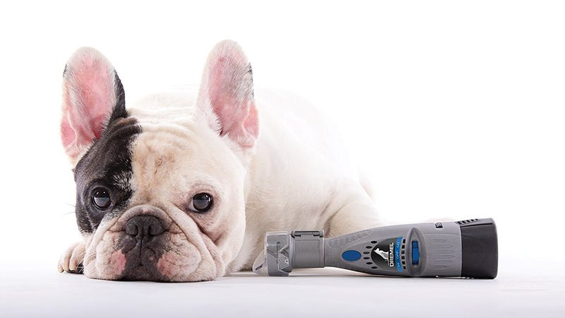Dremel Pet Nail Trimmer | $31 | Amazon