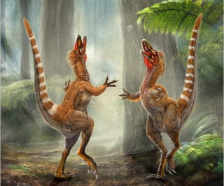 """Illustration for article titled Feathered dinosaur death site could be an """"animal Pompeii"""""""