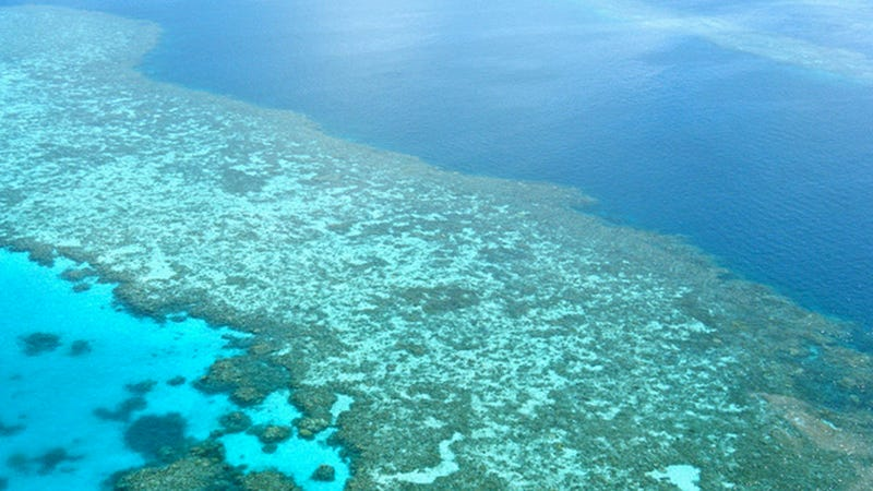 Illustration for article titled The Navy Accidentally Bombed The Great Barrier Reef . . . Sort Of