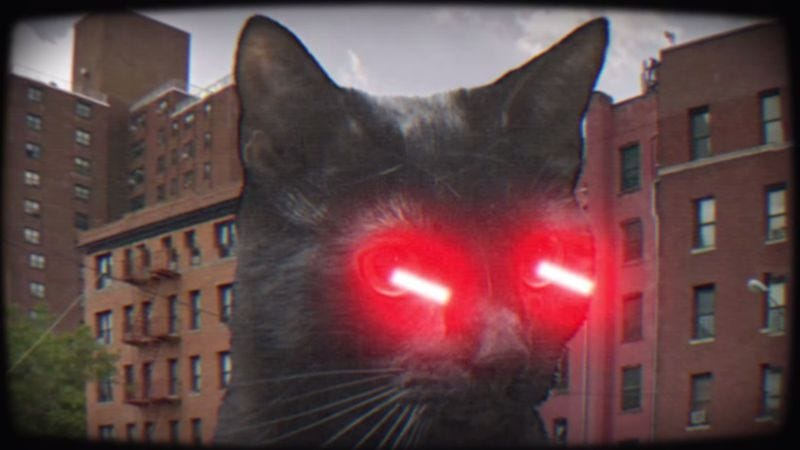 Illustration for article titled The first video from Meow The Jewels is exactly as ridiculous as you'd hope