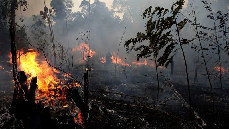 Fires burning in Jacunda National Forest, near the city of Porto Velho in the Vila Nova Samuel region of Brazil, on Aug. 26, 2019.