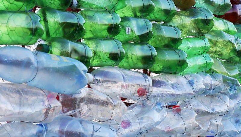 Descubren una nueva bacteria que ha aprendido a alimentarse exclusivamente de plástico
