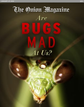 Illustration for article titled Are Bugs Mad At Us?