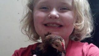 Illustration for article titled PETA Goes After Honey Boo Boo for Naming Her Pet Chicken 'Nugget'