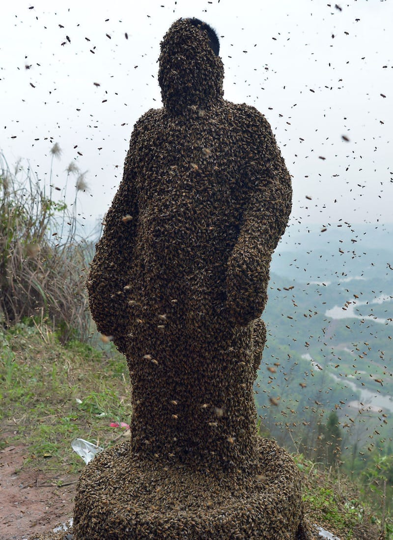 Illustration for article titled Man Covers Himself In 100 Pounds Of Bees To Sell Honey