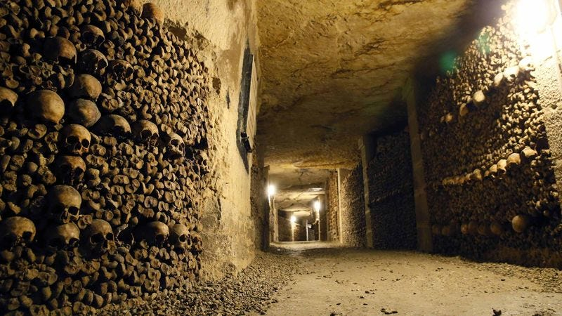 Illustration for article titled Worry Your Mom By Sending Her These Pictures Of The Paris Catacombs With Captions Claiming You Live There
