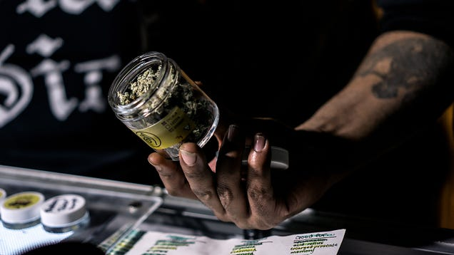 How to Break Into the Legal Weed Industry