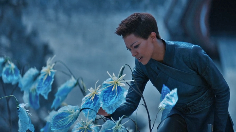 Michael Burnham finds herself back where Star Trek began.