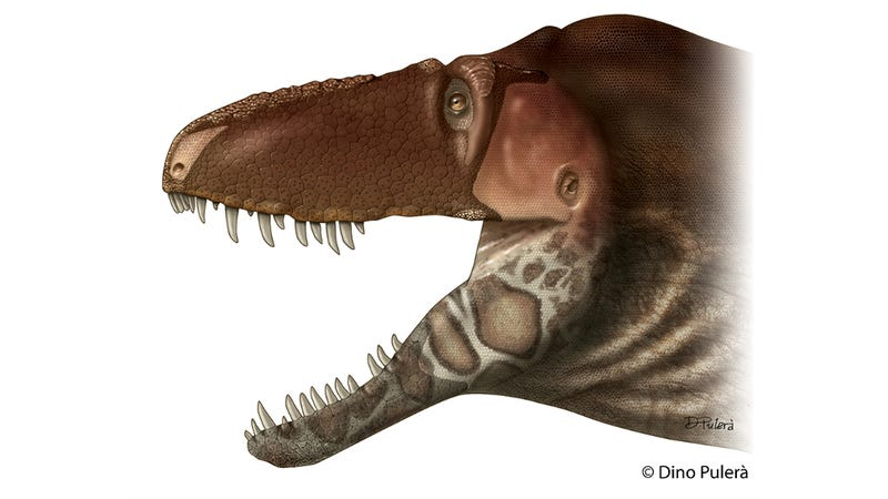 Illustration for article titled This Tyrannosaur Used a 'Sixth Sense' to Hunt Its Prey