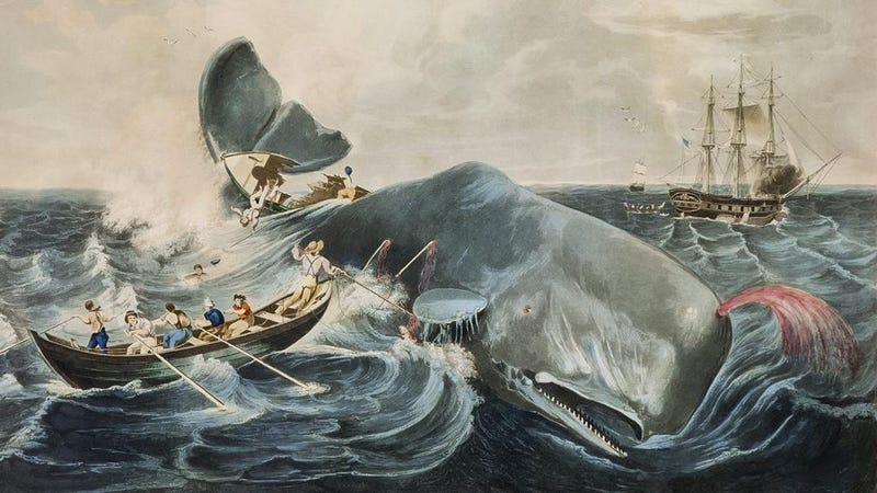 "Image: ""Capturing a Sperm Whale"" by John William Hill (1835)"