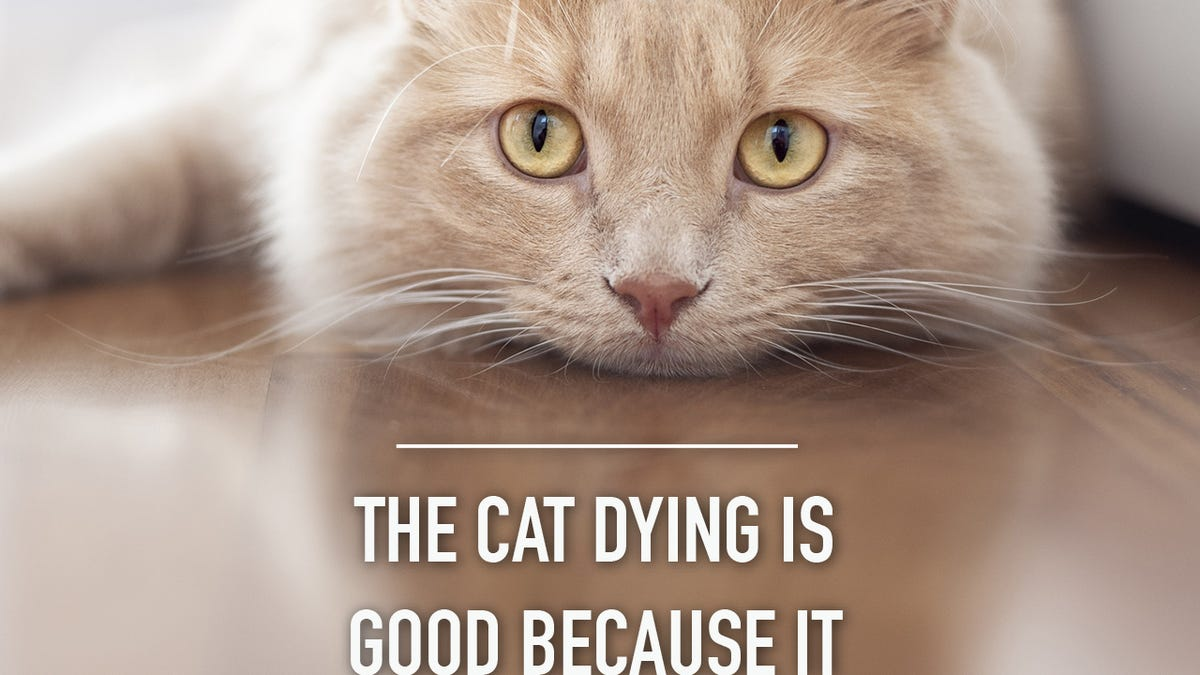 Quotes For Dead Pets - Goldenacresdogs.com