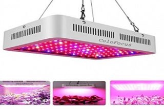 Illustration for article titled Facts to consider When Choosing Best 1000 Watt Led Grow Light