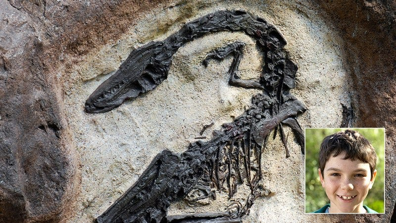 A cool fossil.