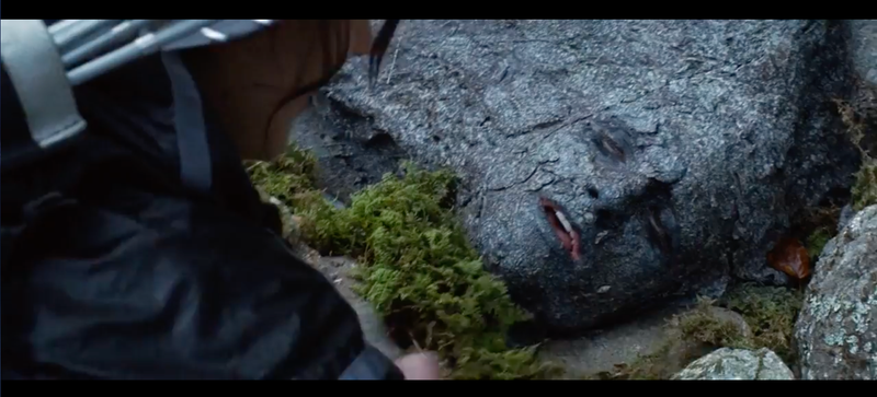 "Remember when Peeta ""hid"" by painting his face like a rock and then Katniss found him? Image: Lionsgate"