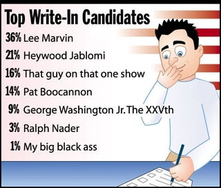 Illustration for article titled Top Write-In Candidates
