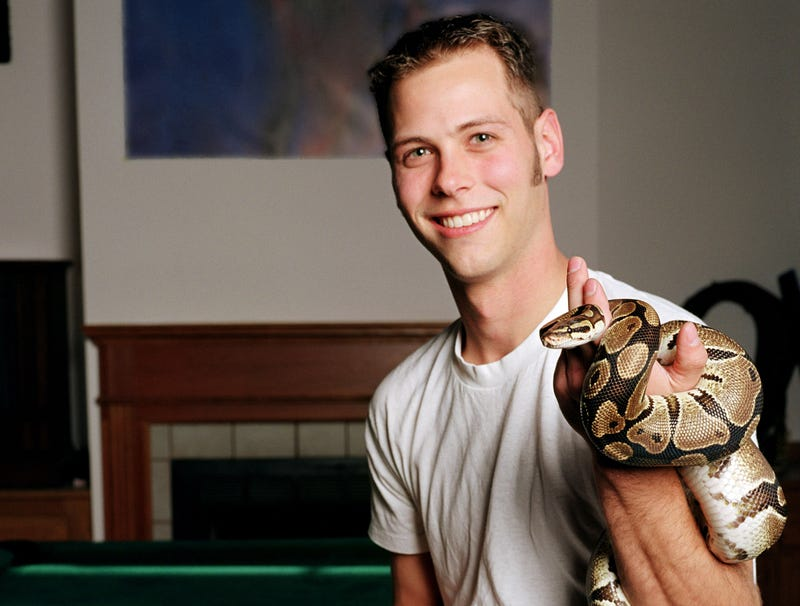 Illustration for article titled You Can Hold Snake, Owner Reports