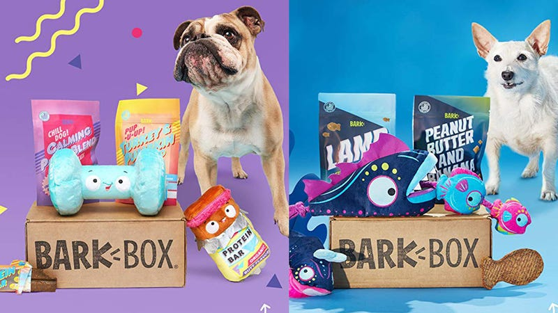 $15 For Your First Month of BarkBox | Amazon
