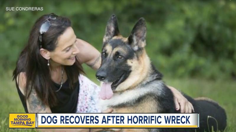 Screencap via ABC Action News