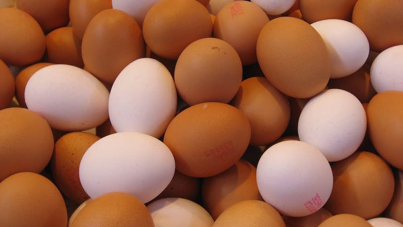 Illustration for article titled Throw Out These Potentially Salmonella-Tainted Eggs Immediately