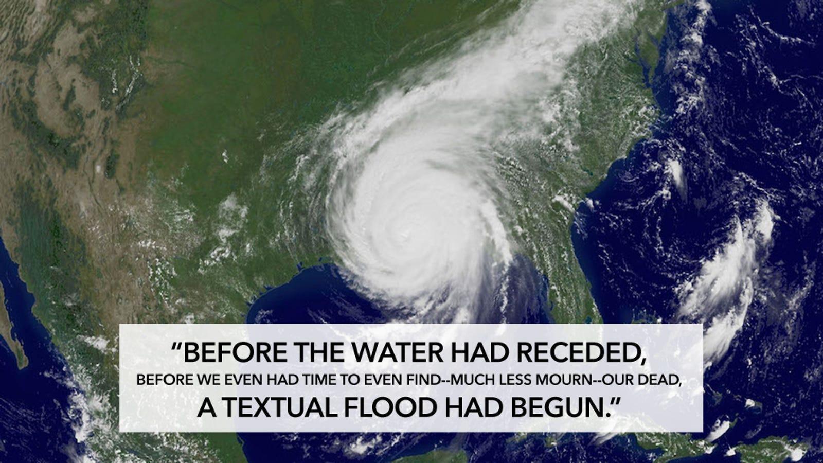 hurricane essay example