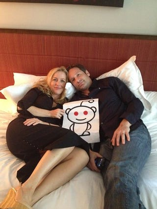 Illustration for article titled Gillian Anderson and David Duchovny AMA